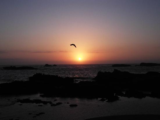Essaouira Youth Hostel & Social Travel : Essaouria sunset