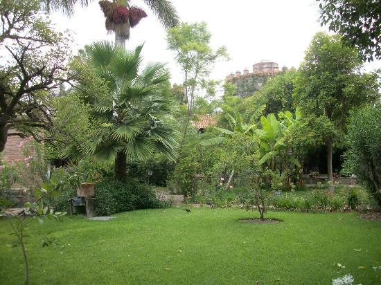 qq garden is so pretty - Qq Garden
