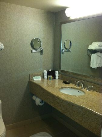 Georgia Tech Hotel and Conference Center: Granite in bathroom