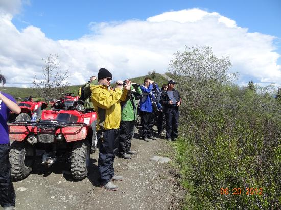 Heiny's ATV Adventures : looking for caribou