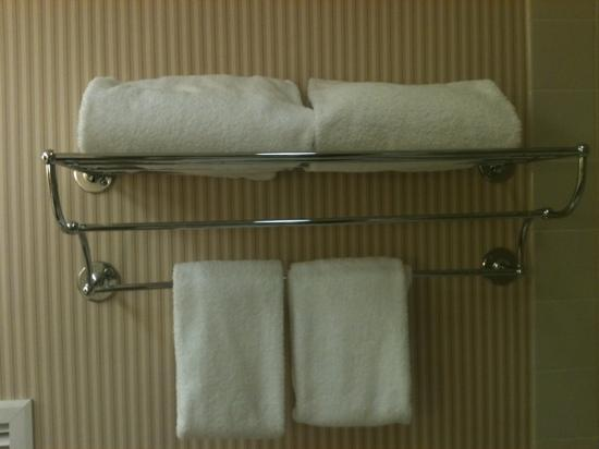 Sheraton Edison Hotel Raritan Center: for real only 2 towels!