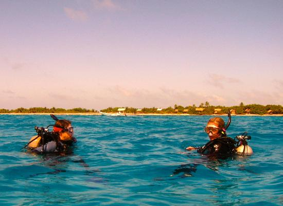 """Off The Wall Dive Center & Resort: """"Long Caye Wall"""", 2 minute boat ride to world class diving!"""