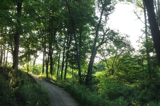 Tillsonburg Golf Course Trails