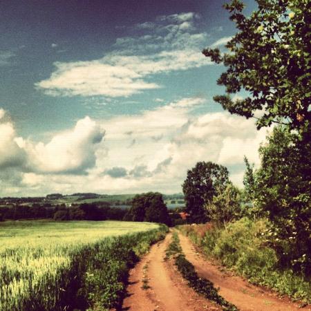 Wegorzewo, โปแลนด์: Okolica
