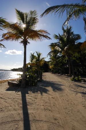بيتر إند ياكت كلوب: The beach 