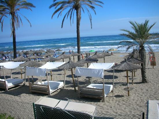 La plage du beach club picture of hotel vincci seleccion - Hotel estrella del mar marbella ...