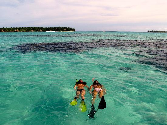 "Off The Wall Dive Center & Resort : Snorkeling at ""The Aquarium"""