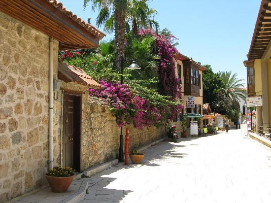 Blue Sea Garden: View from main street