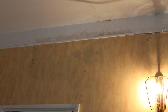 Prince Hotel: Damp on walls