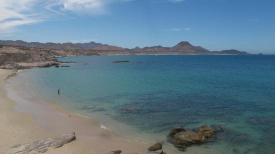 Los arbolitos picture of cabo pulmo beach resort cabo pulmo
