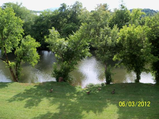 Elk Springs Resort: view of river from the balcony