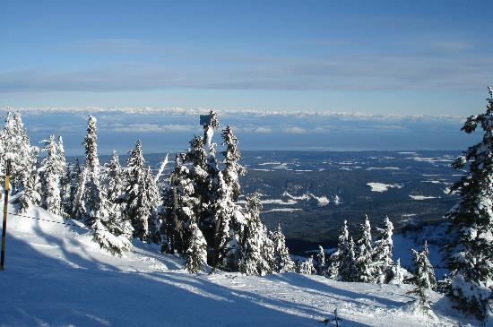 Charm of Qualicum Bed & Breakfast: ...... or go for skiing!