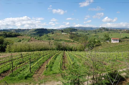 Agriturismo Colleverde: View on the way to Colleverde