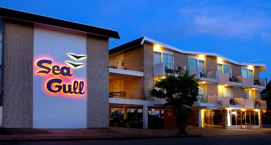 SeaGull Motel: evening at the Gull
