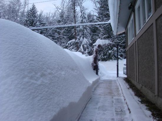 Alpenrose Bed and Breakfast: Big Snow Year 2011 Front Walk