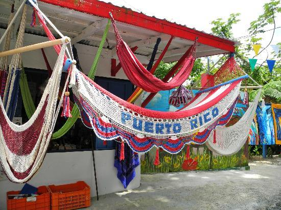 The El Yunque Rain Forest: Puerto Rico Hammock at a gift shop along the way to the watch tower. Loved this!