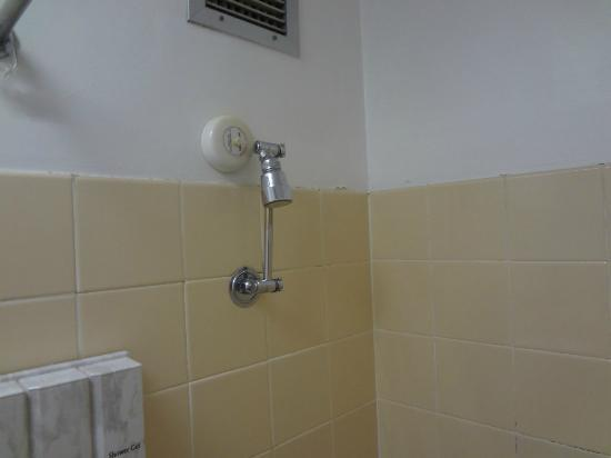 Hotel Launceston: Shower head
