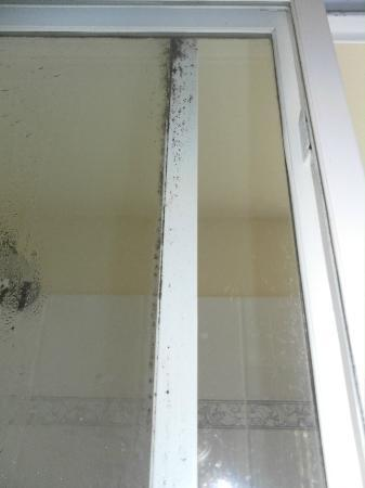 Blue Water Bay Villas: More Mildew