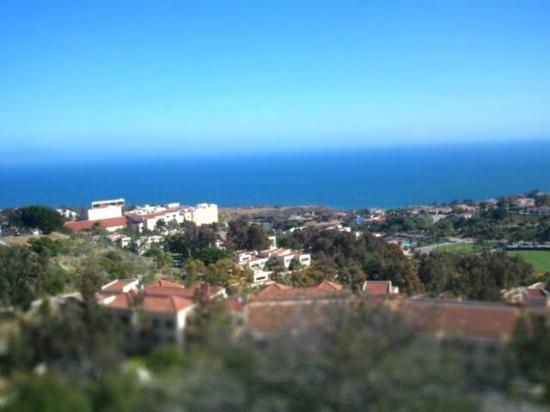 Pepperdine University: Lovely view from the School of Law - top of the hills