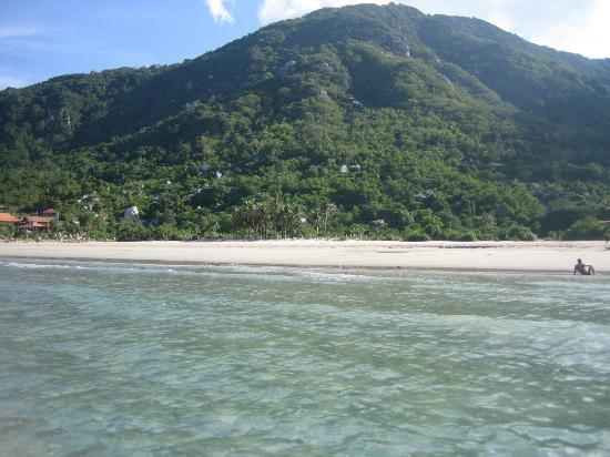 Jungle Beach VietNam: dal mare 2