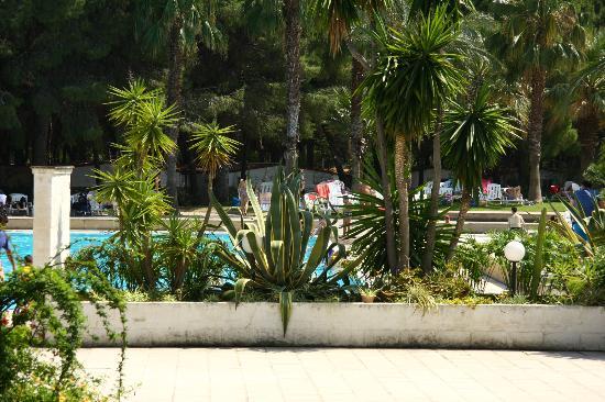 Panoramica foto di villaggio giardini d 39 oriente nova - Villaggio giardini d oriente nova siri ...