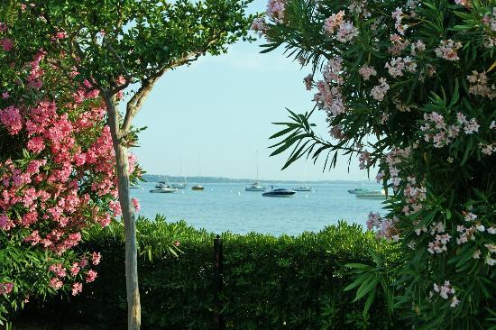 Hotel du Lac et Bellevue: Blick aus dem Garten zum See