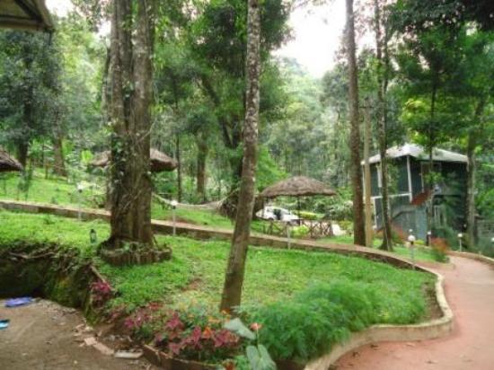Blue Bells Valley Resort : Way to Room