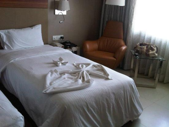 Royal Orchid Central, Vadodara: Room