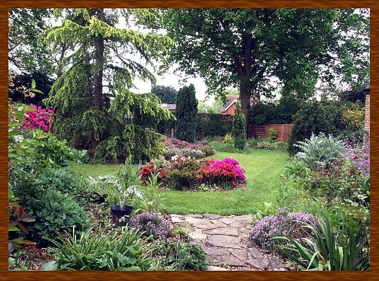 Yew Tree Guest House : our rear garden