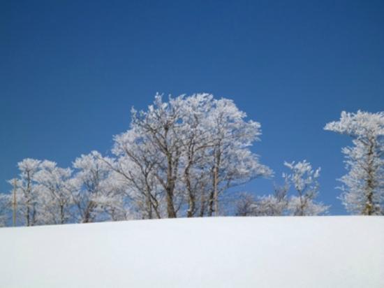 Urabandai Nekoma Ski Place: 猫魔スキー場