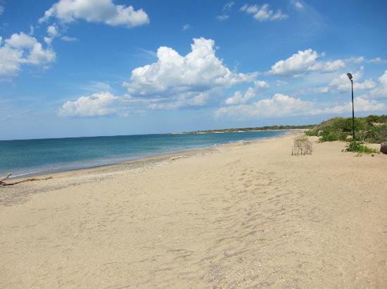 Uga Jungle Beach : beach