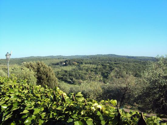B.& B. Del Giglio: View from our bedroom
