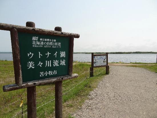 北海道天鹅湖