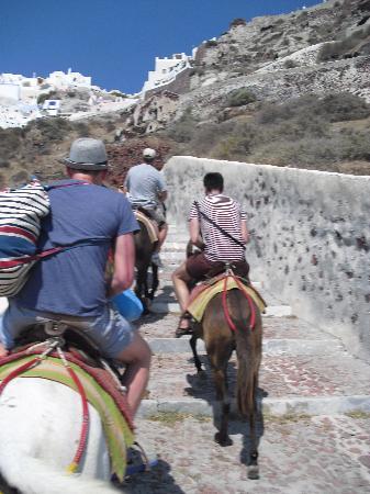 Esperas: Taking the donkeys up the mountain