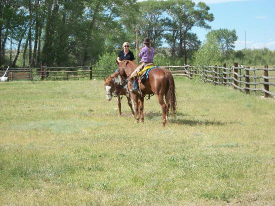 Vee Bar Guest Ranch: Riding lesson