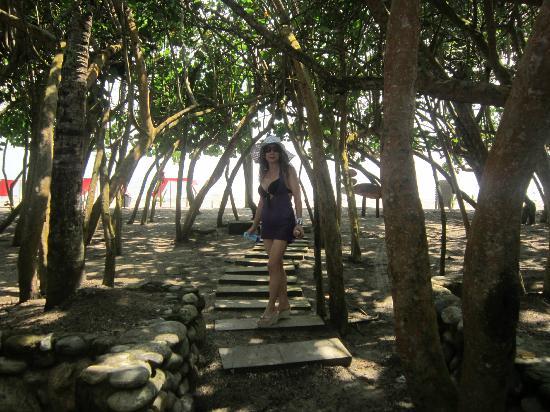 Mendihuaca Caribbean Resort: Ingresando a la playa.
