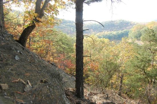 Panorama at the Peak: The long view up river for Cacapon Ridge on Panorama Acres