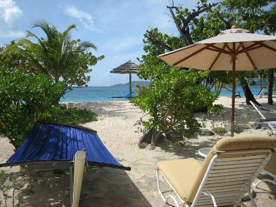Spice Island Beach Resort : Our front garden