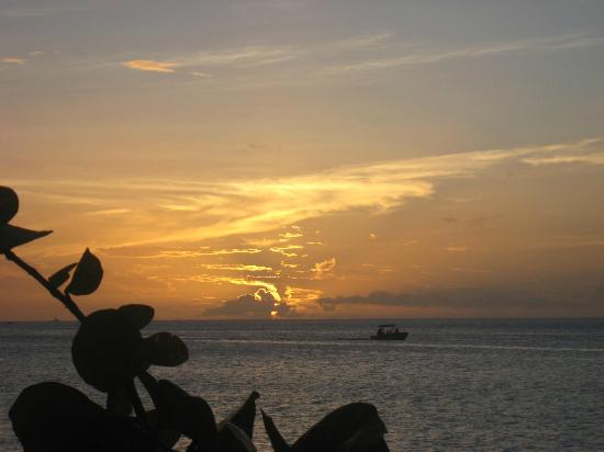 Spice Island Beach Resort: Sunset from beach