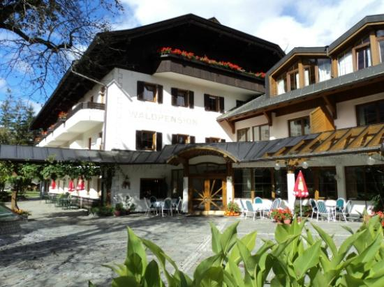 Berg im Drautal Austria  city images : Ferienpark Waldpension Putz Berg Im Drautal, Austria UPDATED 2016 ...