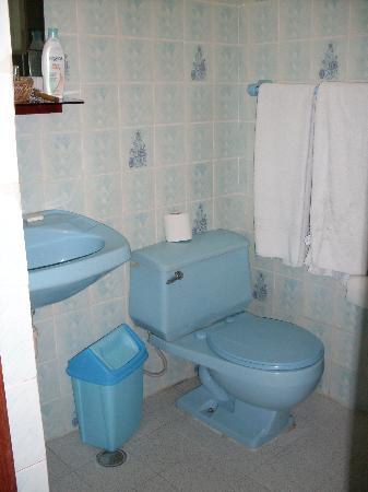 Hotel Las Palmas: Baño, piezas no tan nuevas pero muy limpio