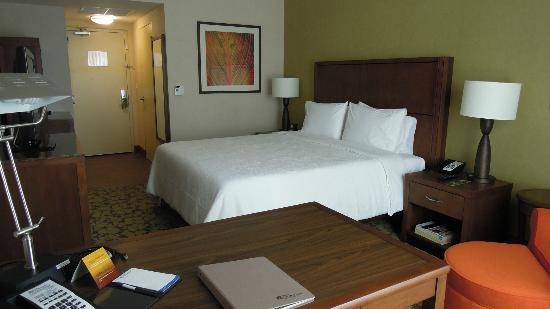 Hilton Garden Inn Panama: Habitación King