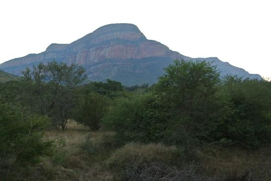 Blyde River Canyon Lodge: View from the backyard