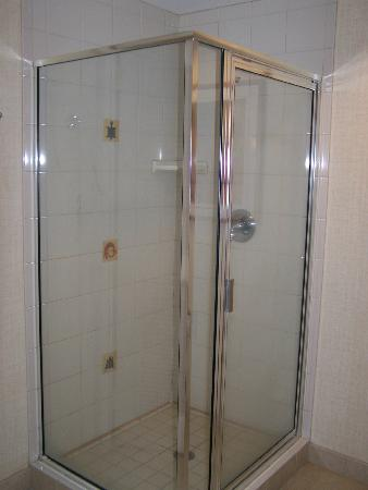 Harrah's Ak-Chin Casino Resort: Stand up shower, always nicer than a tub/shower.