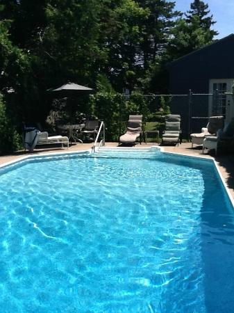 Saltwinds Bed & Breakfast : Take a swim in our inground pool and relax poolside afterward.