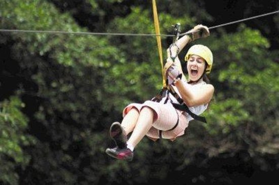 Tours Paradise - Day Tours: canopy adventure