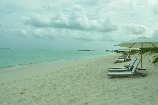 COMO Parrot Cay, Turks and Caicos: The turqoise water and baby powder sand