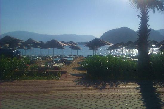 فندق أكوا: Hotel beach viewed from the outside hotel bar 