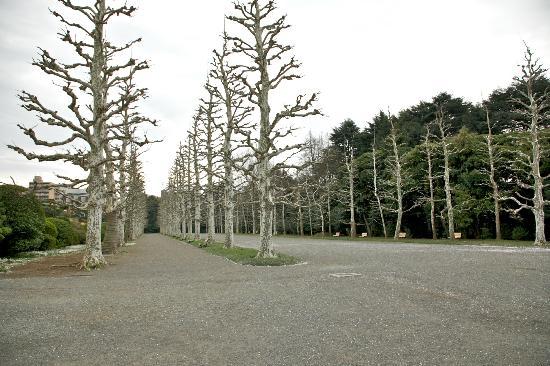 Shinjuku Gyoen National Garden : French themed garden.