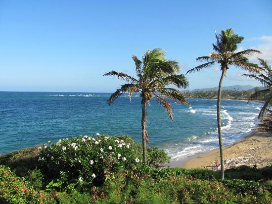 Wailua Bay View Condominiums: View from WBV #204